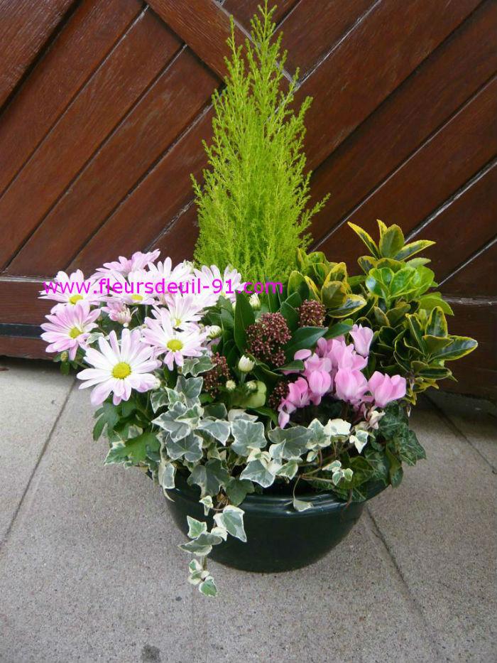 Coupe de plantes pastel